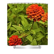 Colorful Summer Flowers Shower Curtain