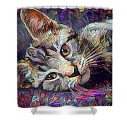 Colorful Tabby Kitten Shower Curtain
