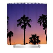 Colorful Tropical Palm Tree Sunset Shower Curtain