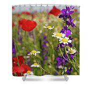 Colorful Wild Flowers Nature Spring Scene Shower Curtain