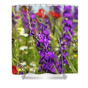 Colorful Wild Flowers Spring Scene Shower Curtain