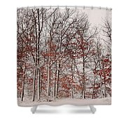 Colorful Winters Day Shower Curtain