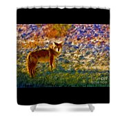 Colorized Death Valley Coyote Shower Curtain