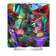 Colors And Geometries For A Violin  Shower Curtain