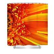 Colors Galore Shower Curtain