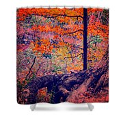 Colors In Nature  Shower Curtain