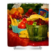 Colors Of Alabama Shower Curtain