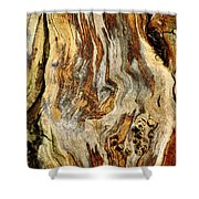 Colors Of Bark Shower Curtain