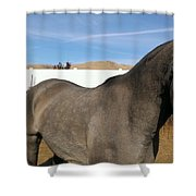 Colors Of Beauty Shower Curtain