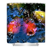 Colors Of Koi Shower Curtain