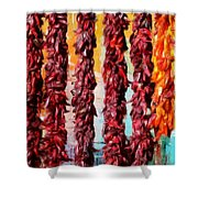 Colors Of New Mexico Shower Curtain