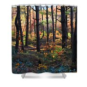 Colors Of The Forest Shower Curtain