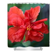 Colors Of The Tropics Hibiscus Shower Curtain