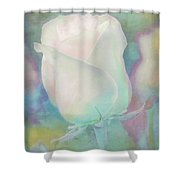 Colors Of This Rose Shower Curtain