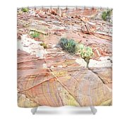 Colors Of Wash 3 In Valley Of Fire Shower Curtain
