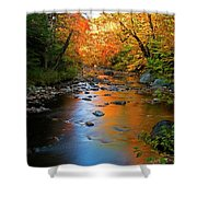 Colors On A Stream Shower Curtain