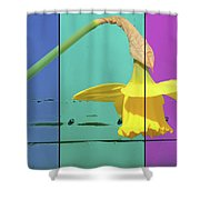 Colour Blocking Spring Shower Curtain