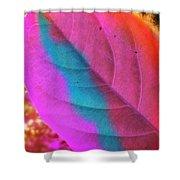 Colour Leaf Shower Curtain