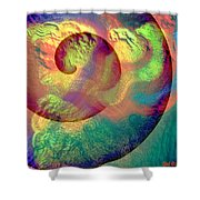 Colour Spiral Shower Curtain