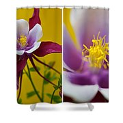 Colourful Colombine Shower Curtain