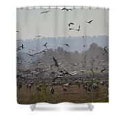 Colourful Flying Chaos Shower Curtain