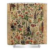 Colourful Meadow Flowers Over Vintage Dictionary Book Page  Shower Curtain