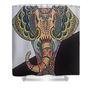 Colours In An Elephant Shower Curtain