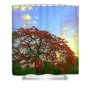 Colours Of Nature Shower Curtain
