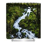 Columbia Gorge 1 Shower Curtain