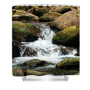 Columbia Gorge 2 Shower Curtain