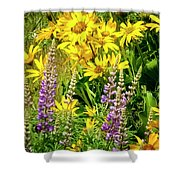 Columbia Gorge Wildflowers Shower Curtain