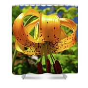 Columbia Lily Shower Curtain