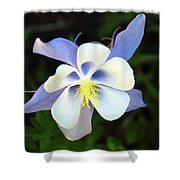 Columbine Colorado State Flower Shower Curtain