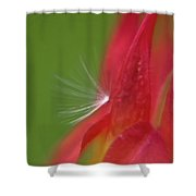 Columbine Fair Shower Curtain