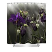 Columbine Mindscape Shower Curtain