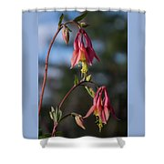 Columbine Sentinals Shower Curtain