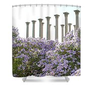 Column Flowers To The Sky Shower Curtain