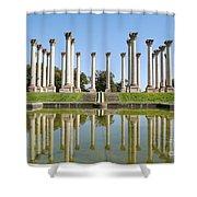 Column Reflection Shower Curtain