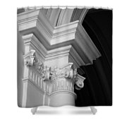 Columns At Hermitage Shower Curtain