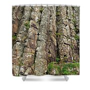Columns Of Giants Shower Curtain
