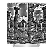 Columns Of Support Shower Curtain