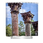 Columns Of Windsor Ruins Shower Curtain