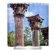 Columns Of Windsor Ruins Shower Curtain