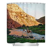 Comanche Gold Shower Curtain