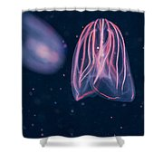Comb Jellies Shower Curtain