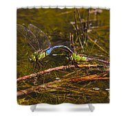 Come Along With Me Dragonflies Shower Curtain