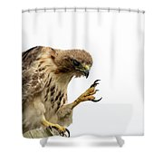 Come Closer Kid Shower Curtain