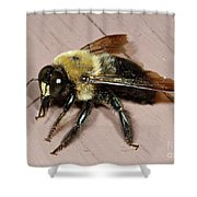 Come Fly With Me Shower Curtain