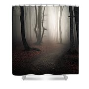 Come Into The Light Shower Curtain