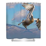 Come On - Are You Kidding Me Shower Curtain